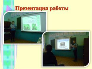 Презентация работы