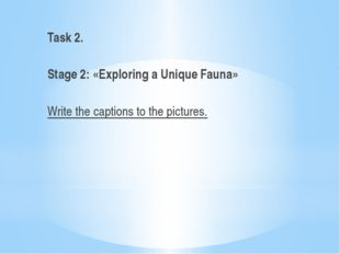 Task 2.   Stage 2: «Exploring a Unique Fauna»   Write the captions to the pic