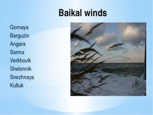 Baikal winds Gornaya Barguzin Angara Sarma Verkhovik Shelonnik Snezhnaya Kultuk