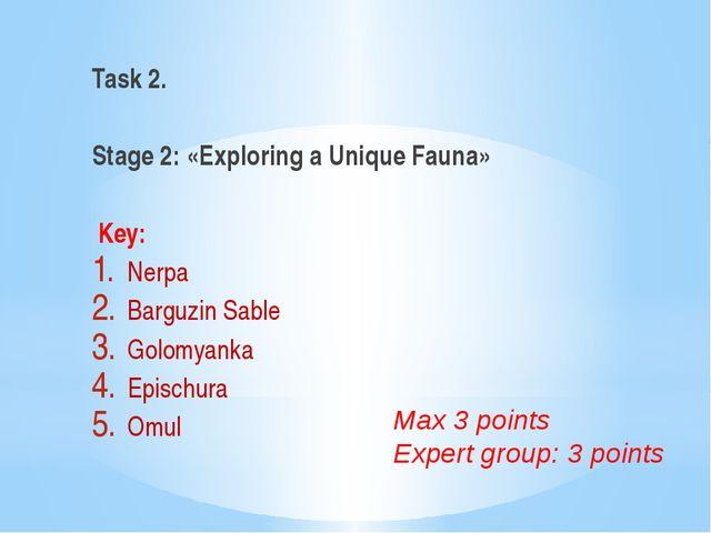 Task 2.  Stage 2: «Exploring a Unique Fauna» Key: Nerpa Barguzin Sable Golo...