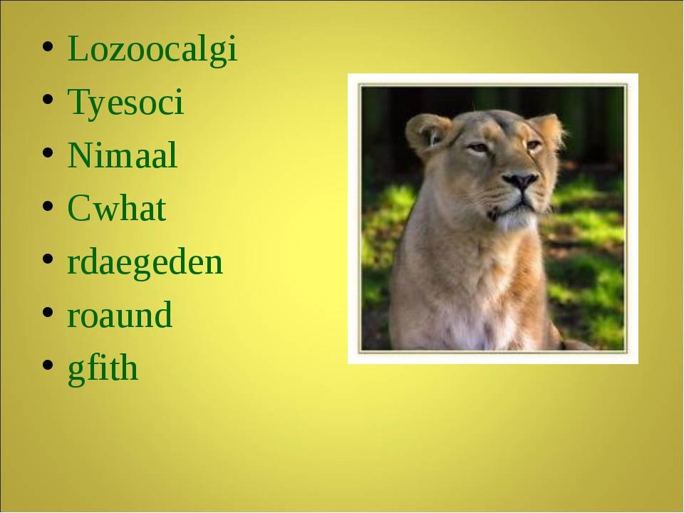 Lozoocalgi Tyesoci Nimaal Cwhat rdaegeden roaund gfith