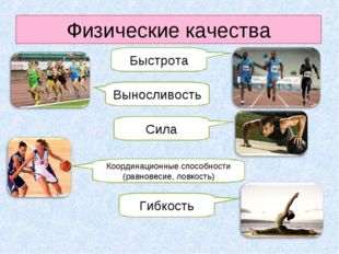 Физические качества Быстрота Выносливость Сила Координационные способности (р