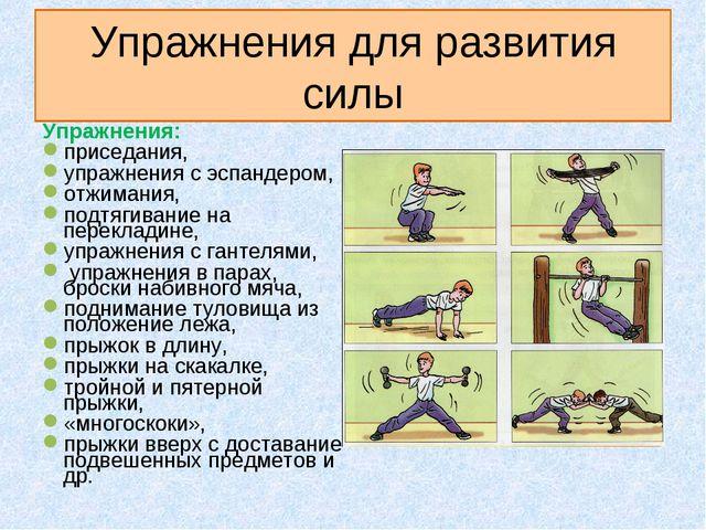 Упражнения для развития силы Упражнения: приседания, упражнения с эспандером,...