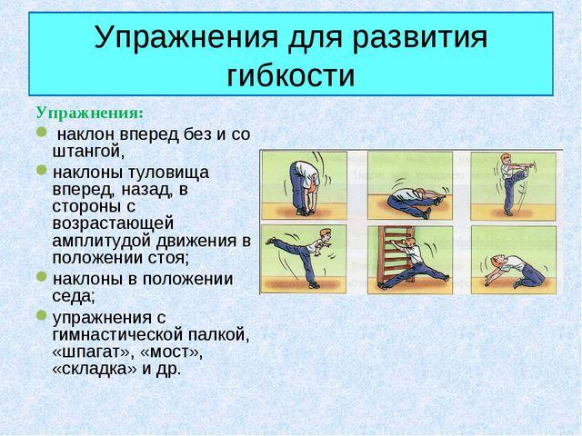 Упражнения для развития гибкости Упражнения: наклон вперед без и со штангой,...