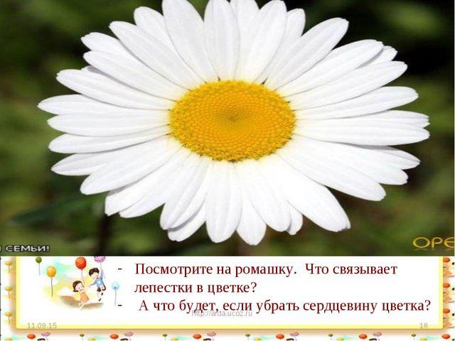 * http://aida.ucoz.ru * Посмотрите на ромашку. Что связывает лепестки в цветк...