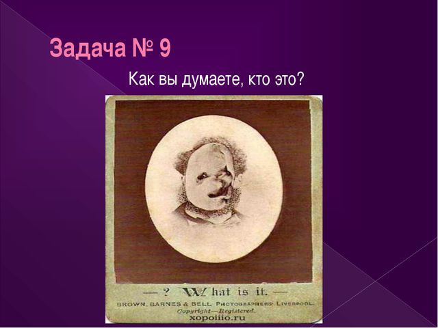 Задача № 9 Как вы думаете, кто это?