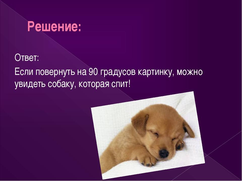 Решение: Ответ: Если повернуть на 90 градусов картинку, можно увидеть собаку,...