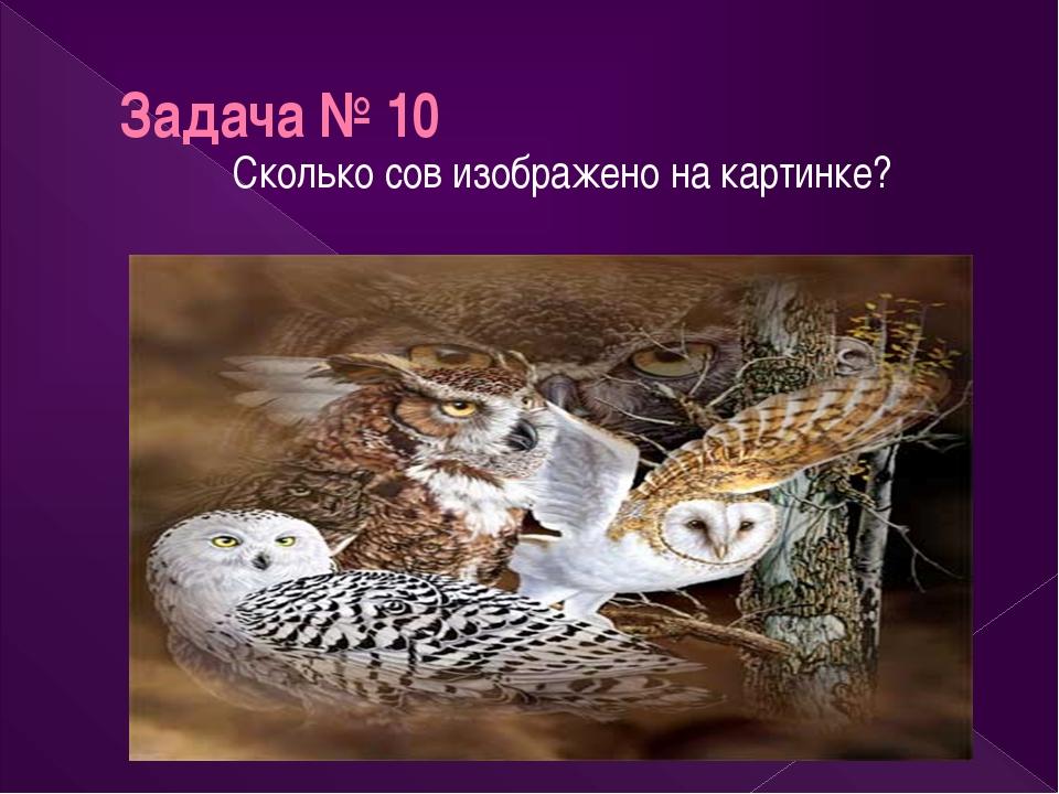 Задача № 10 Сколько сов изображено на картинке?