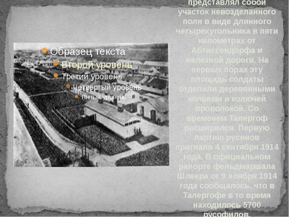 Лагерь Талергоф представлял собой участок невозделанного поля в виде длинного...