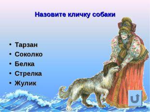 Назовите кличку собаки Тарзан Соколко Белка Стрелка Жулик