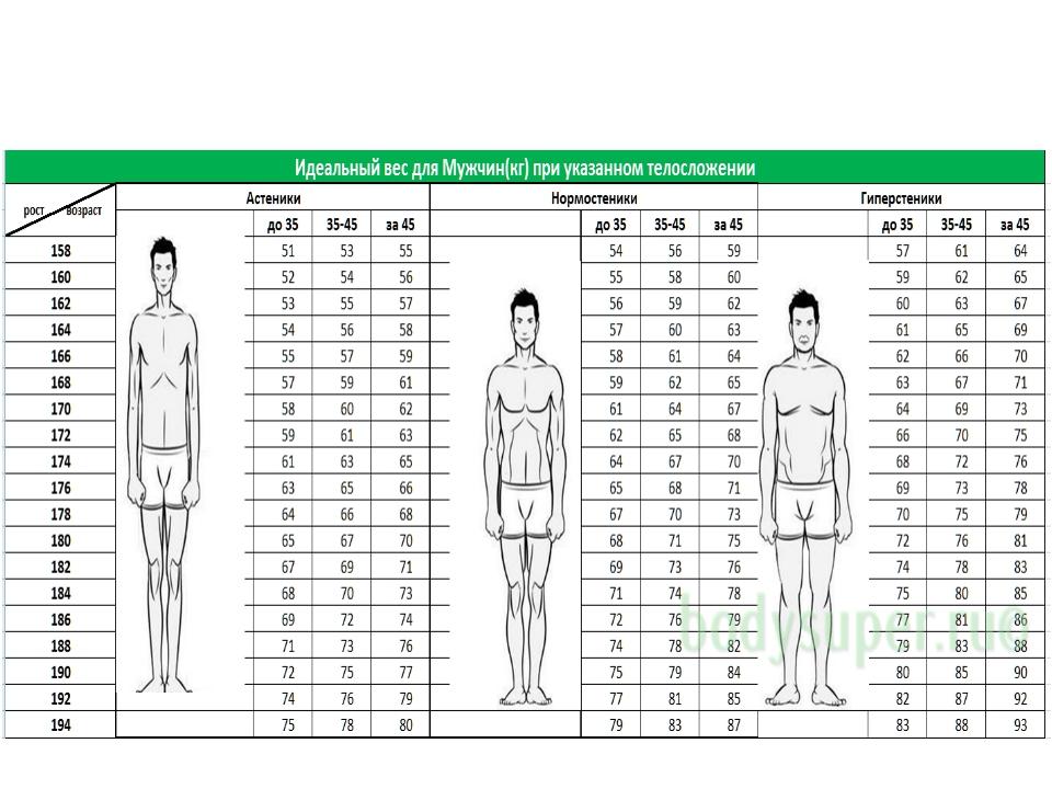параметры фигуры у мужчин для фотомодели для обучения