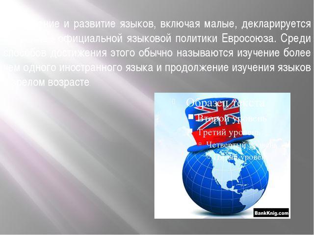 Сохранение и развитие языков, включая малые, декларируется в качестве официа...