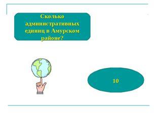 Сколько административных единиц в Амурском районе? 10