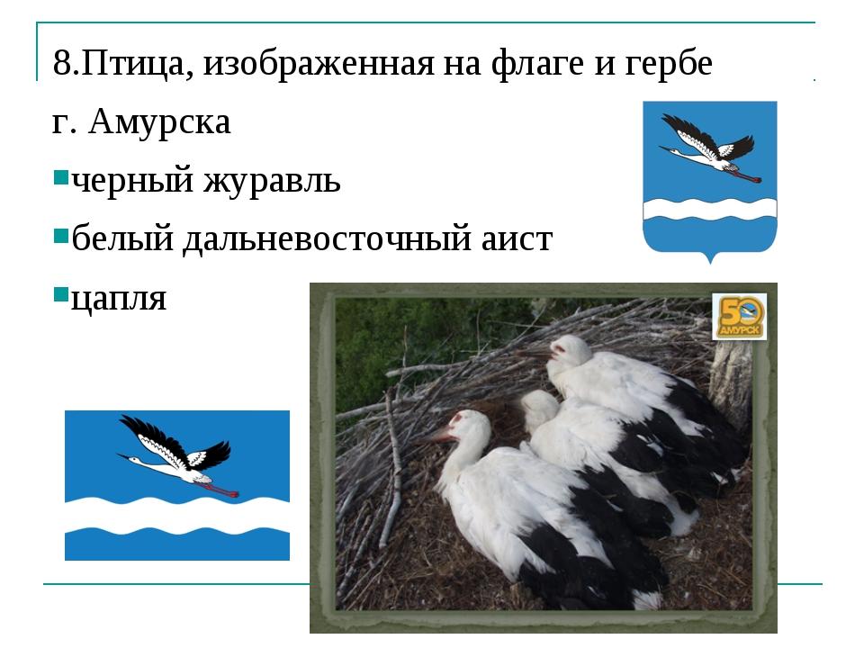 8.Птица, изображенная на флаге и гербе г. Амурска черный журавль белый дальне...