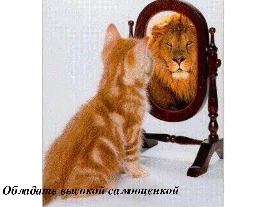 Обладать высокой самоoценкой