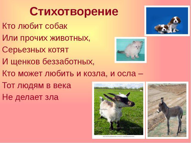 Стихотворение Кто любит собак Или прочих животных, Серьезных котят И щенков б...