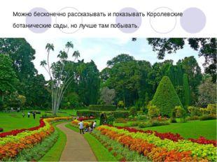 Можно бесконечно рассказывать и показывать Королевские ботанические сады, но