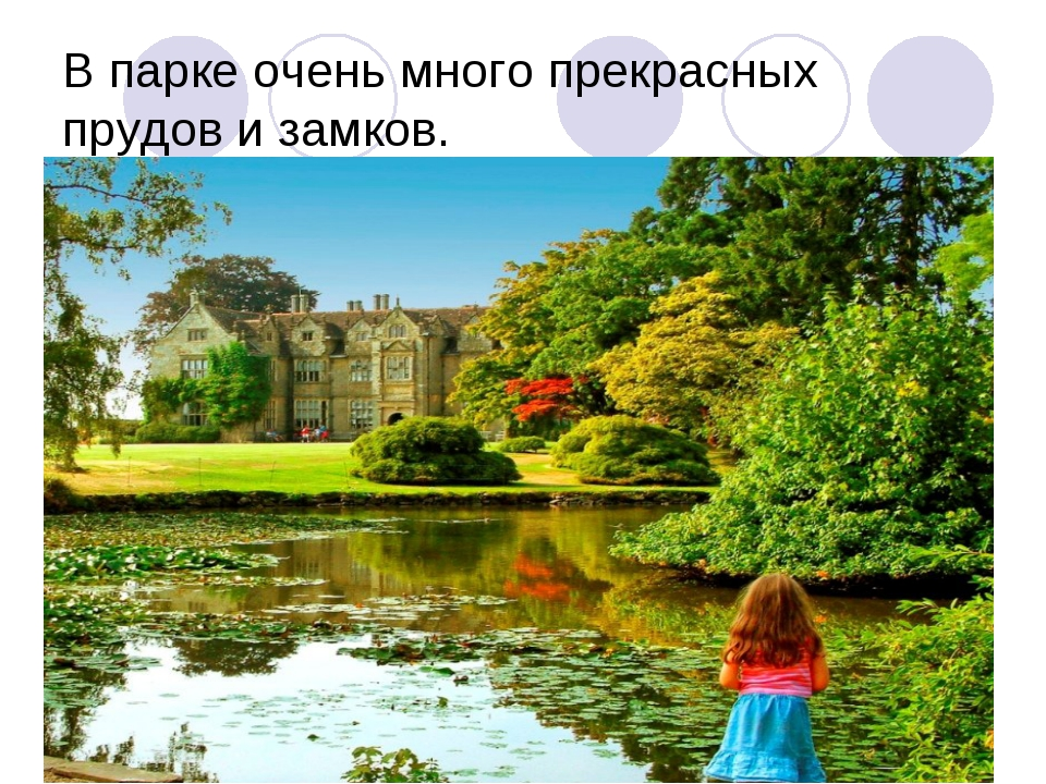 В парке очень много прекрасных прудов и замков.