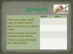 before	after There are many small cages in Safari Parks	 	  There are fence