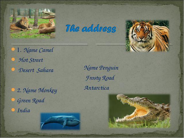 1. Name Camel Hot Street Desert Sahara 2. Name Monkey Green Road India Name P...