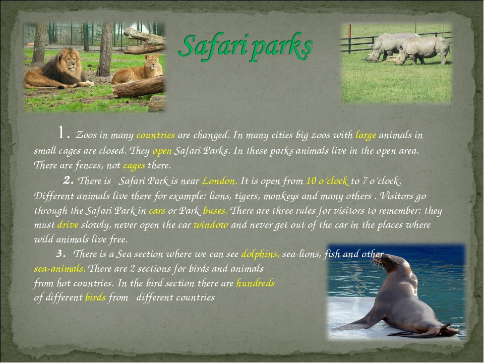 1. Zoos in many countries are changed. In many cities big zoos with large an...