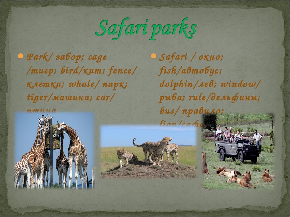 Park/ забор; cage /тигр; bird/кит; fence/ клетка; whale/ парк; tiger/машина;...