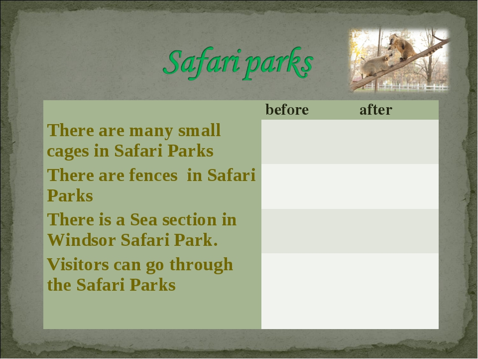 before	after There are many small cages in Safari Parks	 	  There are fence...