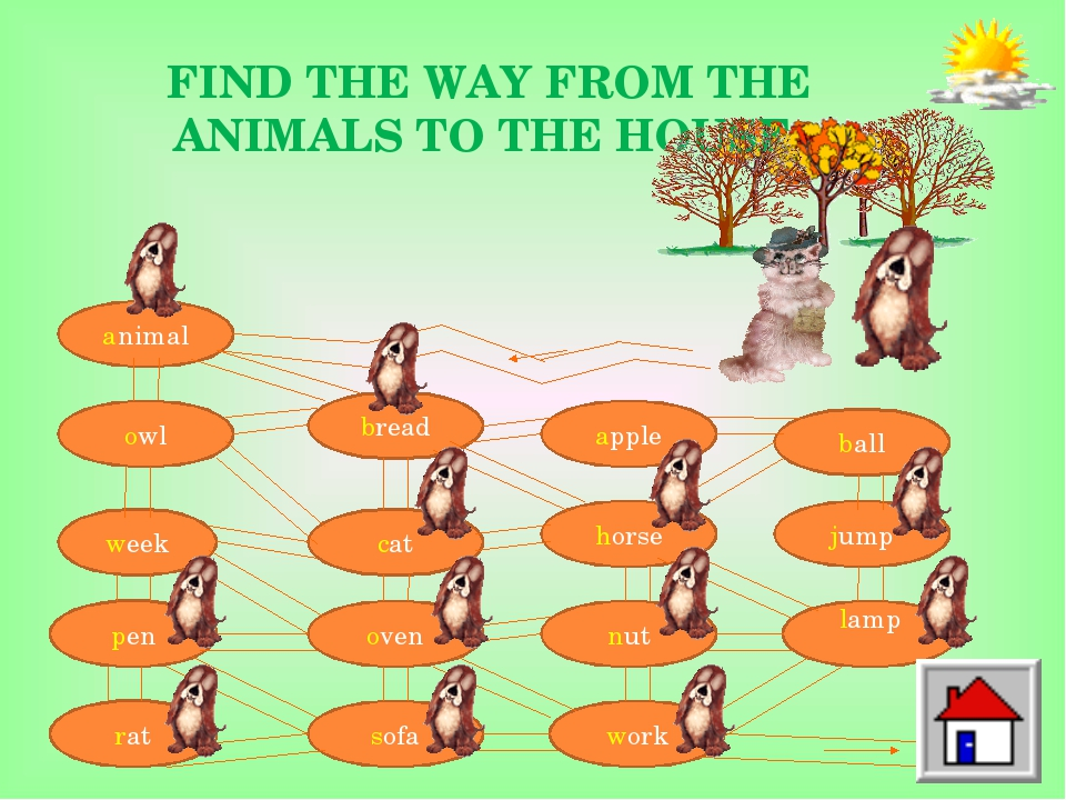 FIND THE WAY FROM THE ANIMALS TO THE HOUSE. animal owl week pen rat bread cat...