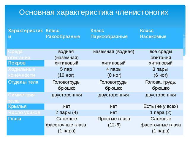 Основная характеристика членистоногих Характеристики Класс Ракообразные Класс...