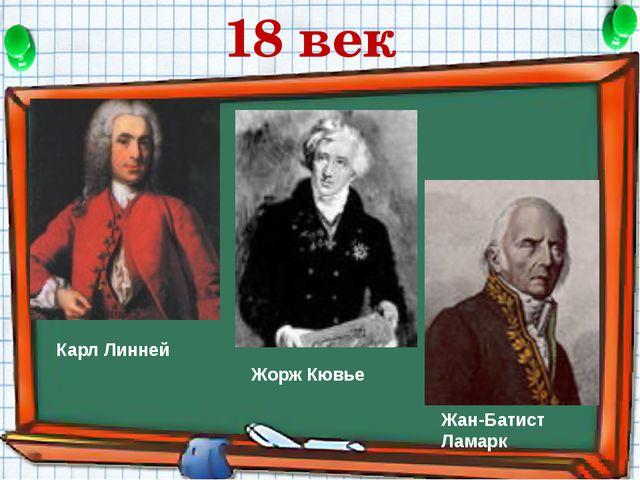 Карл Линней Жорж Кювье Жан-Батист Ламарк 18 век