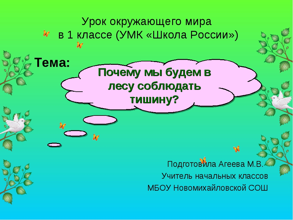 Тема: Подготовила Агеева М.В. Учитель начальных классов МБОУ Новомихайловской...