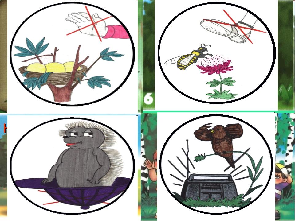 Экологические знаки в картинках о животных
