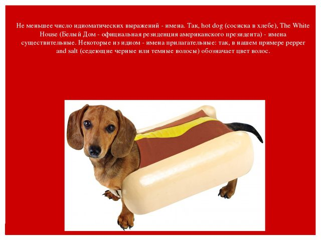 Не меньшее число идиоматических выражений - имена. Так, hot dog (сосиска в хл...