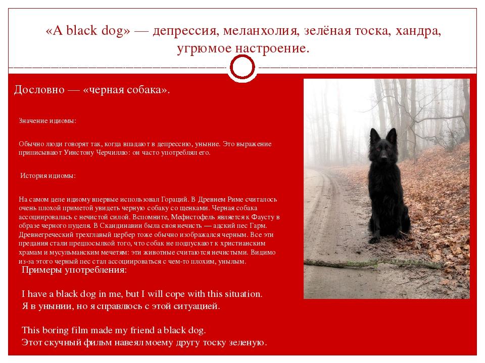 «A black dog» — депрессия, меланхолия, зелёная тоска, хандра, угрюмое настрое...