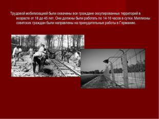 Трудовой мобилизацией были охвачены все граждане оккупированных территорий в