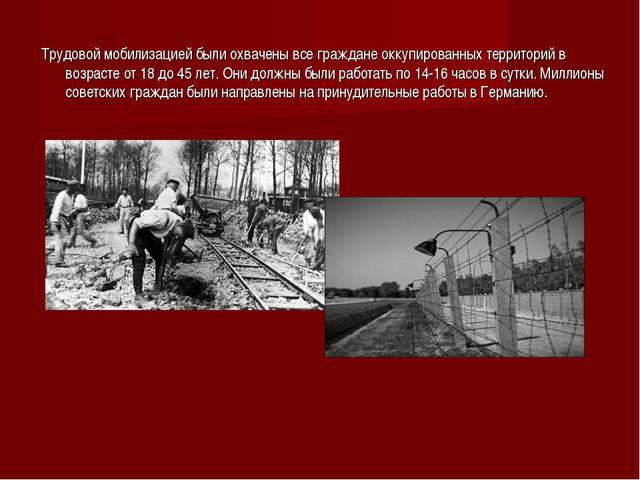 Трудовой мобилизацией были охвачены все граждане оккупированных территорий в...