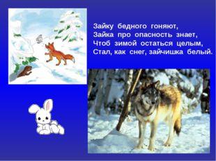 Зайку бедного гоняют, Зайка про опасность знает, Чтоб зимой остаться целым, С