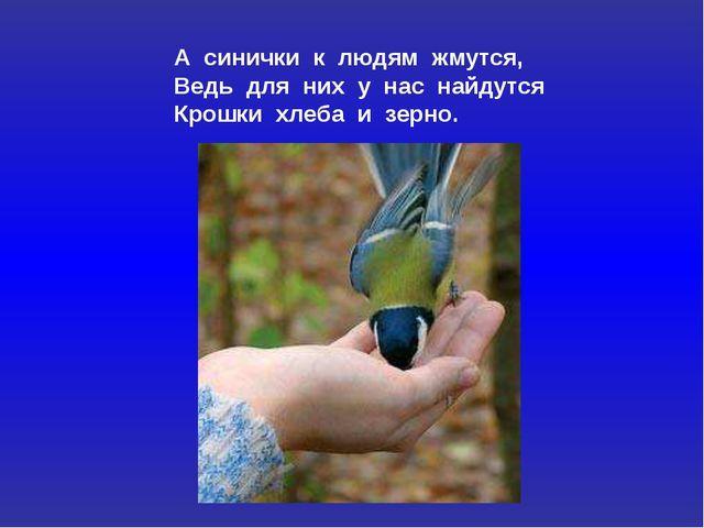 А синички к людям жмутся, Ведь для них у нас найдутся Крошки хлеба и зерно.