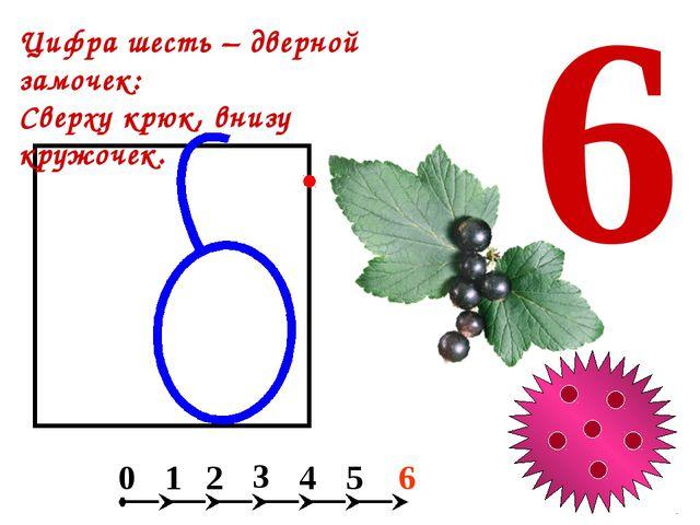 Какой фигуры нет на рисунке? а) круга; б) квадрата; в) прямоугольника; г) тр...