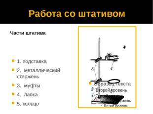 Работа со штативом Части штатива 1. подставка 2. металлический стержень 3. му