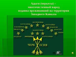 Адыги (черкесы) – многочисленный народ издавна проживавший на территории Запа