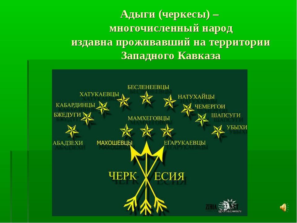 Адыги (черкесы) – многочисленный народ издавна проживавший на территории Запа...