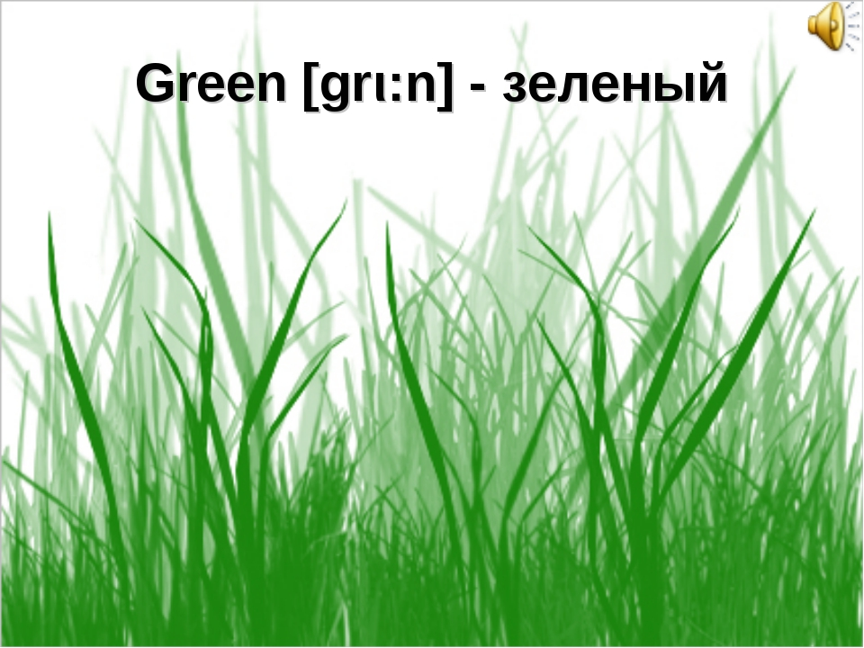 Green [grι:n] - зеленый