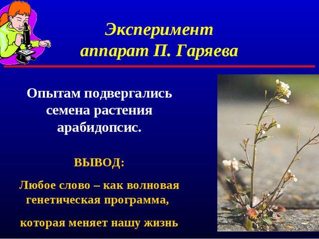 Эксперимент аппарат П. Гаряева Опытам подвергались семена растения арабидопси...