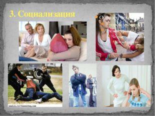3. Социализация