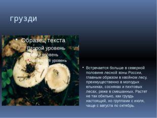 грузди Встречается больше в северной половине лесной зоны России, главным обр