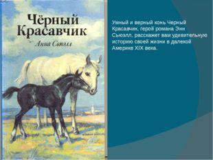Умный и верный конь Черный Красавчик, герой романа Энн Сьюэлл, расскажет вам