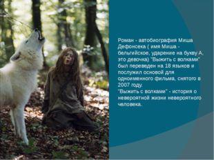 Роман - автобиография Миша Дефонсека ( имя Миша - бельгийское, ударение на бу