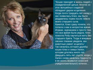 """""""Кошки приходят в жизнь людей с определенной целью. Многие из этих волшебных"""