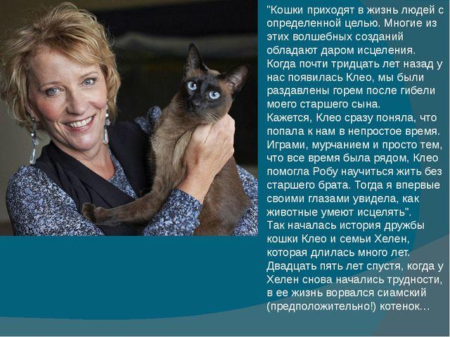 """""""Кошки приходят в жизнь людей с определенной целью. Многие из этих волшебных..."""